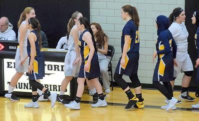 HS Sports - Edsel Ford vs. Fordson Girls' Basketball