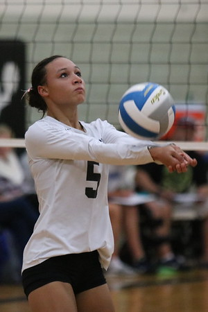 HS Sports - Gibraltar Carlson at Edsel Ford  Volleyball