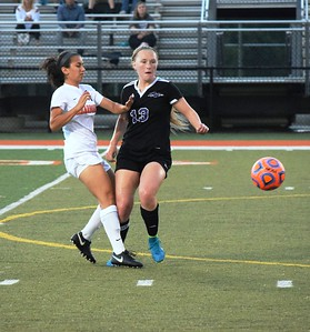 In a pair of Division 1 district semifinals on Friday night, Woodhaven defeated host Dearborn High 1-0 and Southgate Anderson knocked off Lincoln Park 2-1 in overtime. Woodhaven and Anderson will square off on Saturday, back at Dearborn, for the championship. Photo by Alex Muller - For Digital First Media