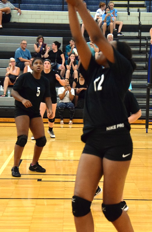 . Edsel Ford welcomed in Taylor High on Tuesday night and came away with a 3-0 sweep in what was the Downriver League opener for both teams. Alex Muller - For Digital First Media