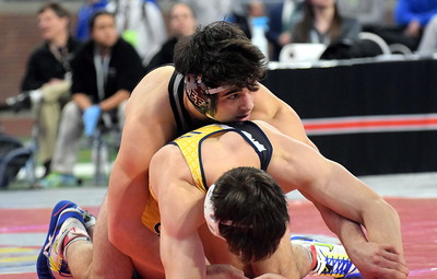 The 2018 wresting state finals were held March 2-3 at Ford Field in Detroit. Edsel Ford's Will Marano was the Division 1, 160-pound state champion and Annapolis' Dustin Gross was runner up at 160 pounds in D2. Photo by Frank Wladyslawski - The Press & Guide