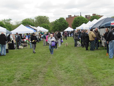 Attendees visit the various vendors on display at the 11th annual Mutt Strut.