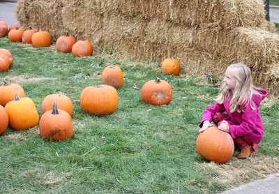 McKenna Peterson, 7, of Dearborn picks out a pumpkin Oct. 29 at the Dearborn Fire Safety House Pumpkin Patch.