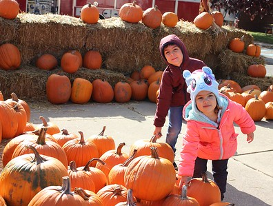 Jad Bazzi (left), 6, and his sister Lily, 3, select pumpkins Oct. 28 at the Dearborn Fire Safety House Pumpkin Patch. Photos by Sue Suchyta -- For The Press & Guide