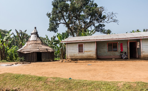 Bakossi traditional house next to modern house. Basseng, Southwest Region, Cameroon Africa