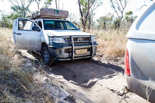 deep loose sand. Khaudum N.P., Kavango Namibia