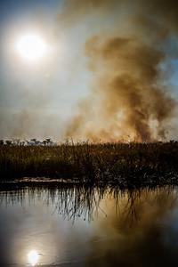 burning grasses for new growth. Kwando River, Kwando, Kavango Namibia