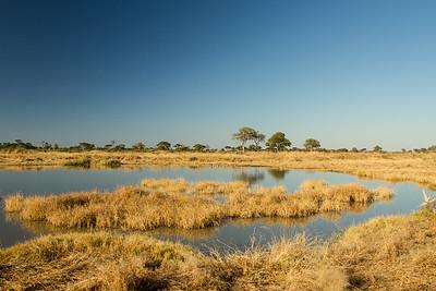 Khaudum N.P., Kavango Namibia
