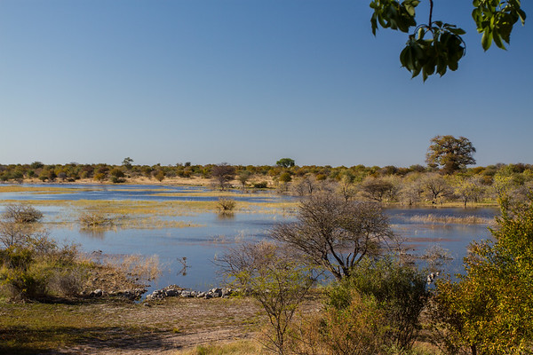 Baobab camp, Otjozondjupa Namibia