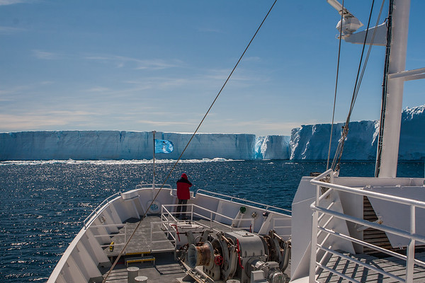 Erebus & Terror Gulf, Weddell Sea Antarctica