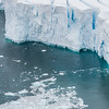 Neko-Harbour Antarctica