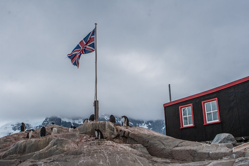 -  - Port Lockroy -  Wiencke Island - Antarctica - ©2007 Margy Green