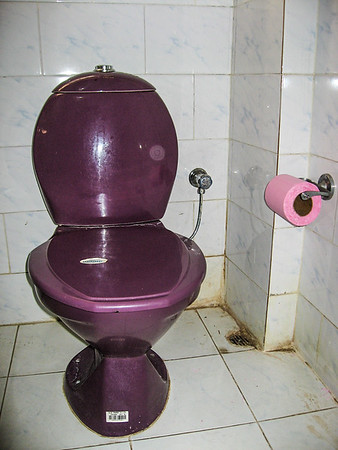 lodging bathroom purple toilet and bright deep pink toilet paper. Tezpur, Assam India