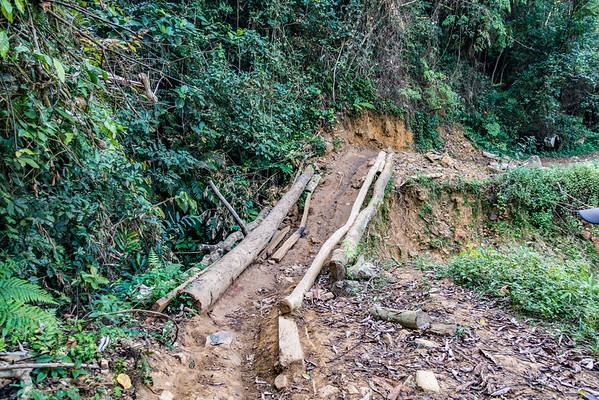 Trail from Bangem to Bermin, Southwest Region, Cameroon Africa