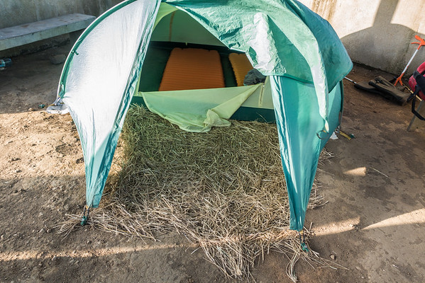 Grass to try and keep dirt out of the tent. Mount Manengouba, Littoral Region, Cameroon Africa