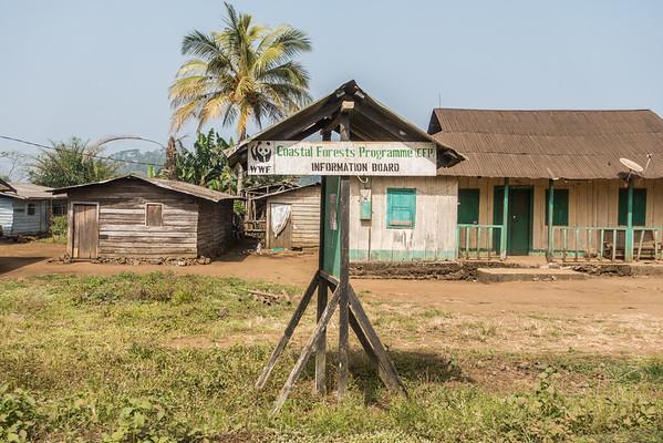 WWF informatin board. Nyasoso, Southwest Region, Cameroon Africa
