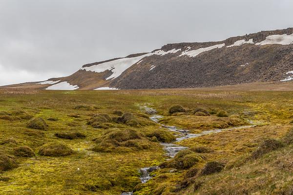 Rosenbergdalen, Edgeoya, Spitsbergen, Svalbard Norway