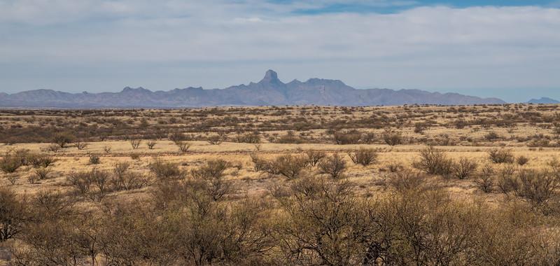 Buenos Aires National WildlifeRefuge, Arizona USA