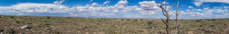Raymond Ranch Wildlife Area, Coconino Co. Arizona USA