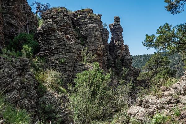 Four Bar Mesa, Greenlee County, Arizona USA
