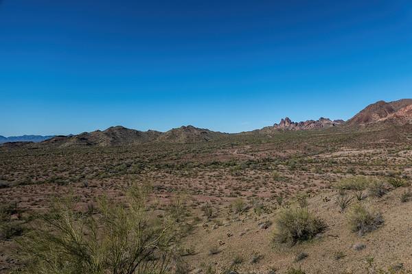 Kofa National Wildlife Refuge, La Paz County, Arizona USA