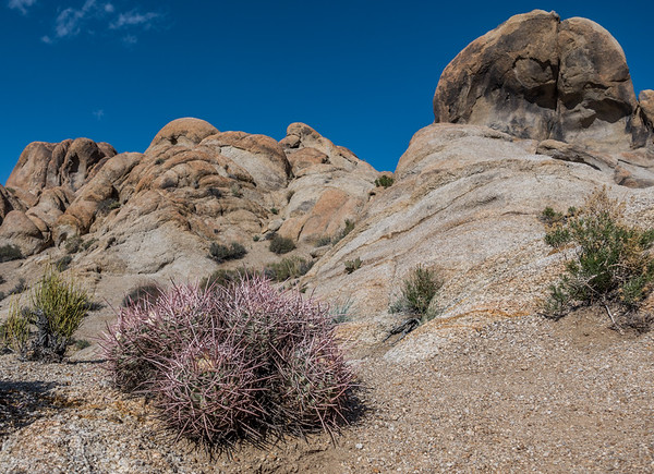 Alabama Hills, Inyo Co. California USA