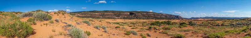 Coral Pink Sand Dunes, Kane Co. Utah USA