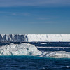 -  - Weddell Sea: Erebus & Terror Gulf -   - Antarctica - ©2007 Margy Green