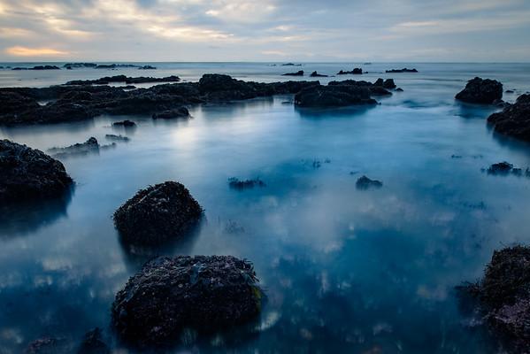 fitzgerald marine reserve tidepools 2016