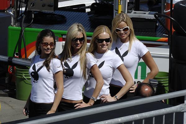 Team Playboy