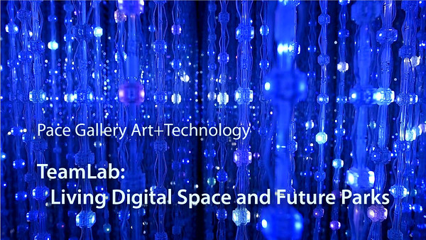teamLab - Pace Gallery
