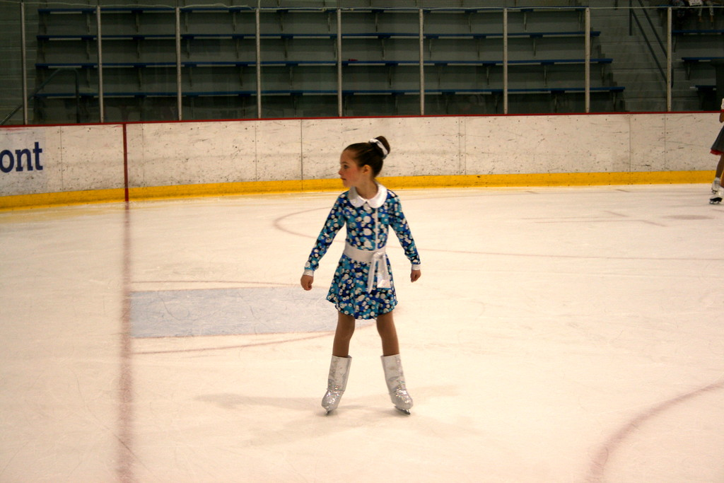 . The Dearborn Crystallettes will get the chance to shine in a national spotlight next month. The team is heading to the Synchronized Skating World Championships in Colorado Springs, one of just two American squads to represent the U.S. Mike Larson - For Digital First Media