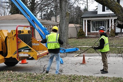 "Work crews started cleaning up the first neighborhood in the ""Good to Great Neighborhood"" program this week. Photos courtesy of City of Taylor"