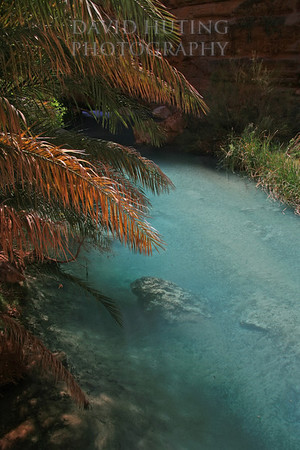 Tropical Waters of Havasu Creek