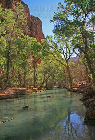 Havasu Creek Campsite