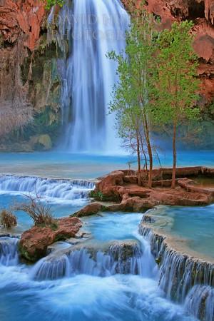 Havasu Falls Vertical