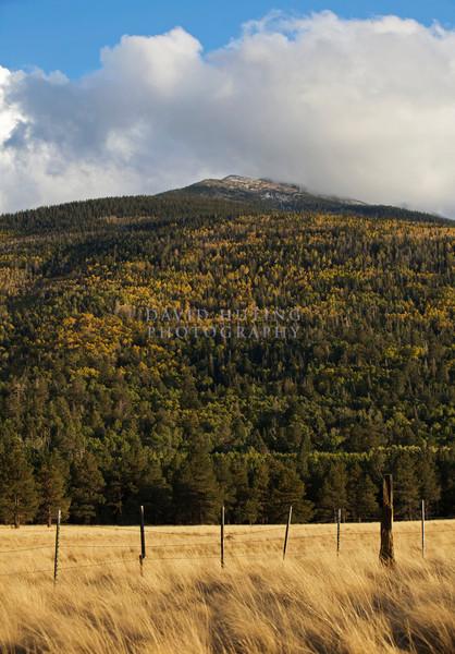 Mountain View Verticalfc