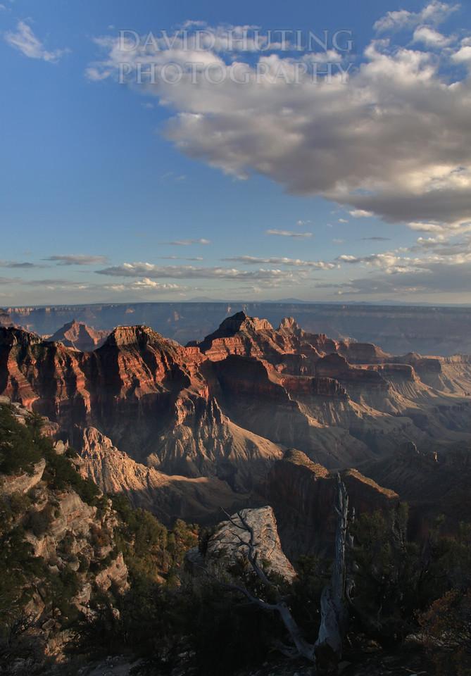 Grand Canyon North Rim Sunset View Vert