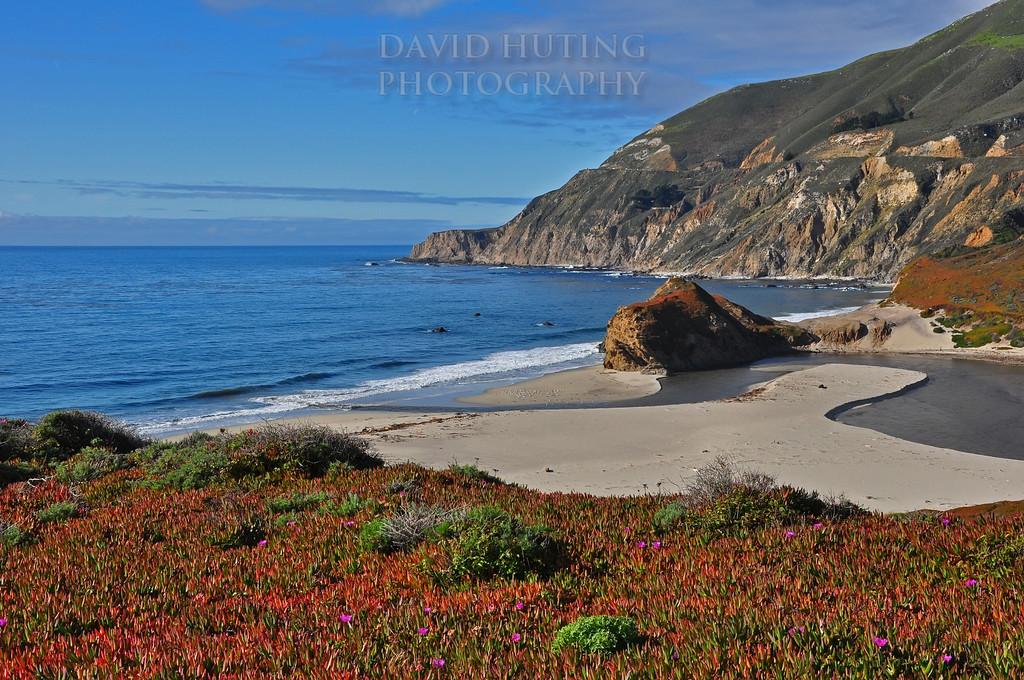 Colorful Coastline View - Highway 1
