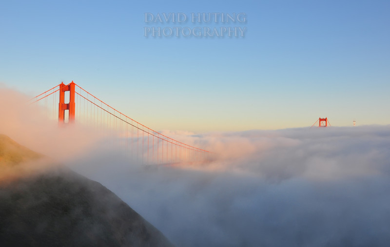 Foggy Golden Gate Tops