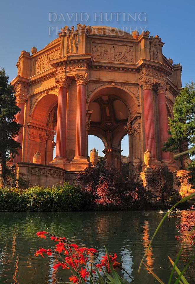 Orange Flowers Exploratorium HDR