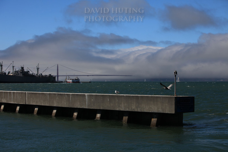 Foggy San Francisco Pier View