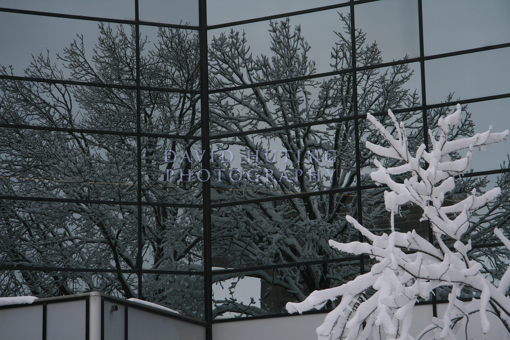 Snow covered trees reflect on the Library.