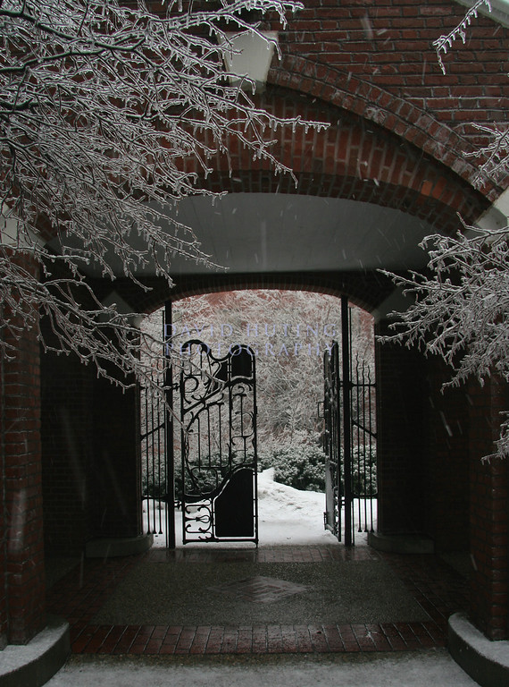Snowy courtyard of Lagomarcio Hall.