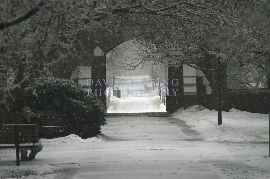 The Snowy Courtyard at Lagomarcio Hall.