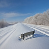 Bench snowy view