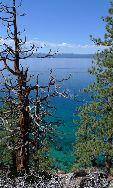 Sharp Coastline View - Lake Tahoe