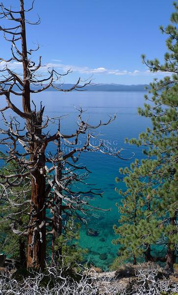 Sharp Coastline View - Lake Tahoe