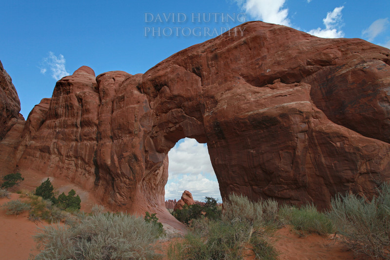 Double Arch EB