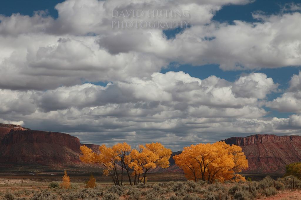 Autumn Canyon Valley